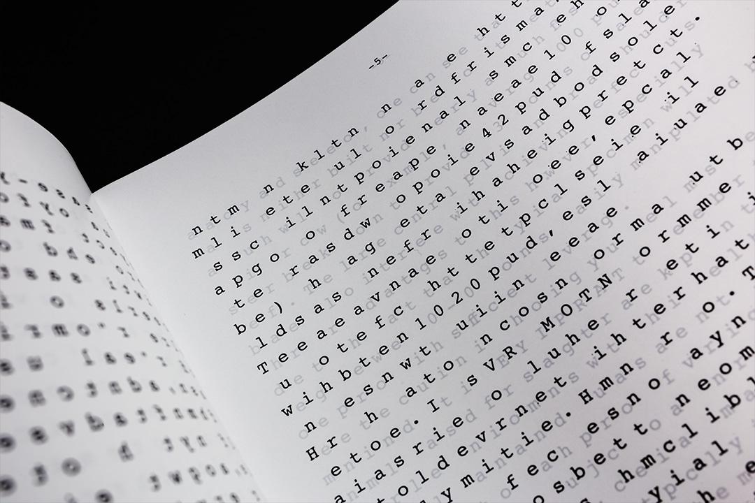 Jasper Otto Eisenecker, Camouflaged Books. 2014