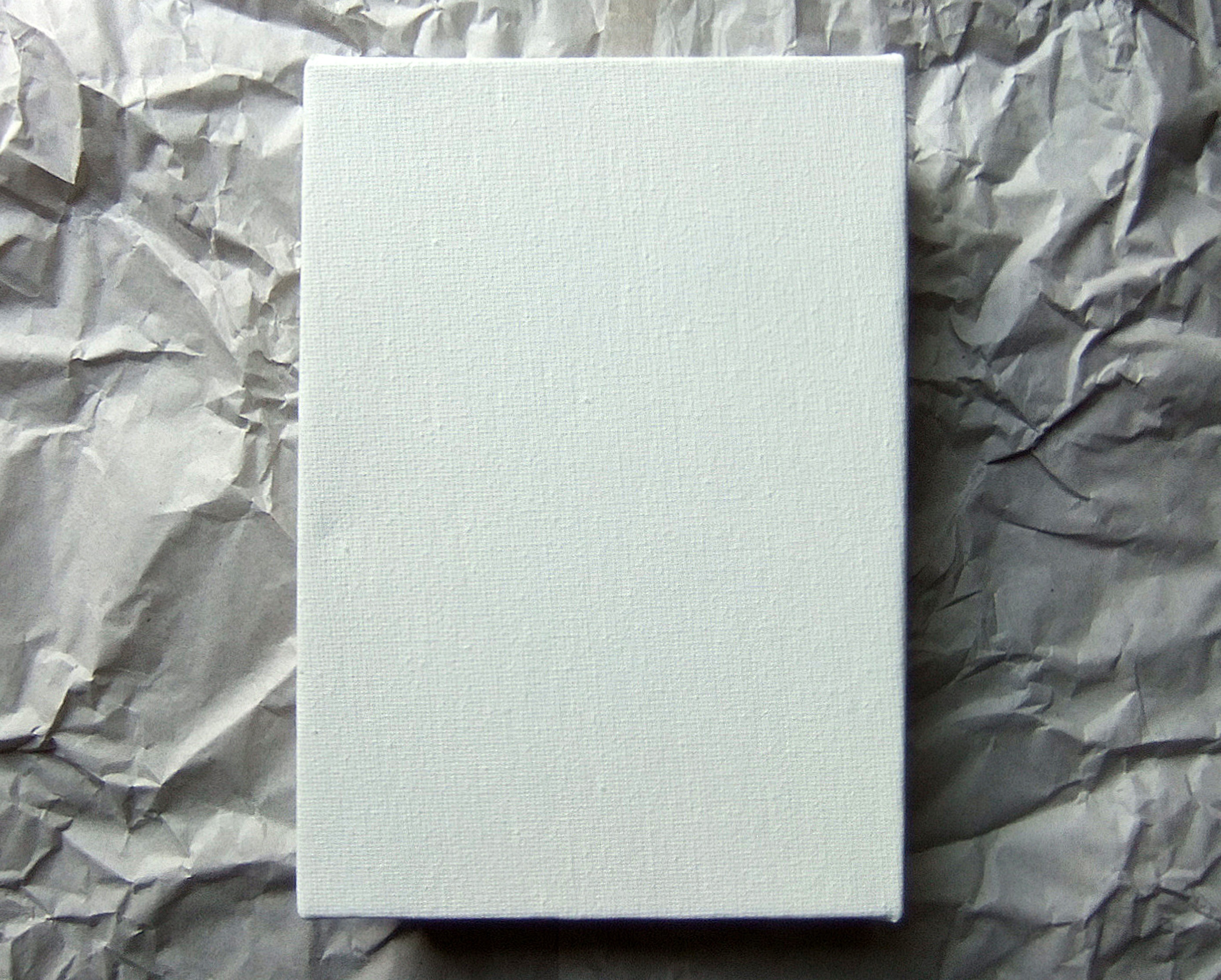 An unprinted canvas