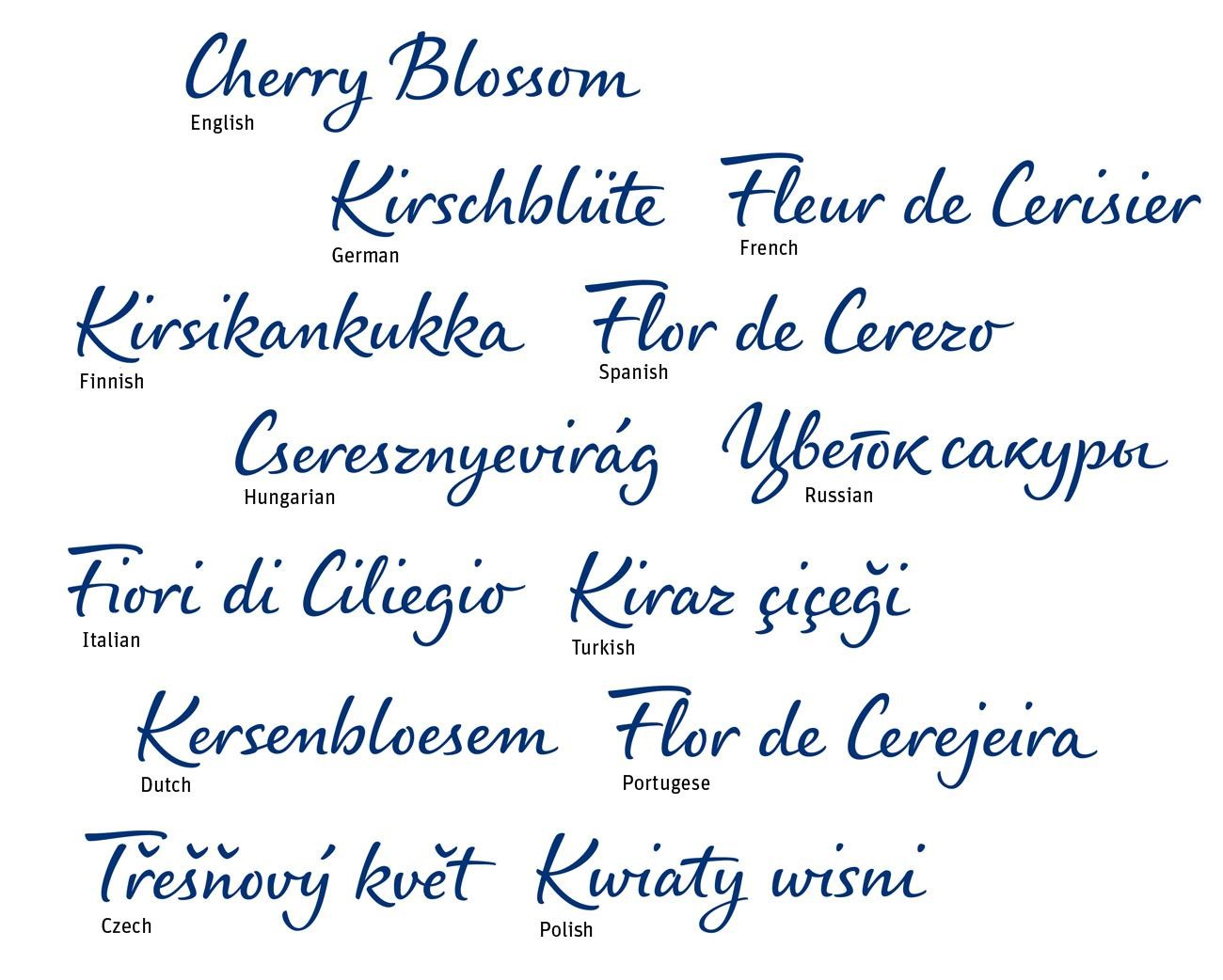 The font is available in over 100 languages.
