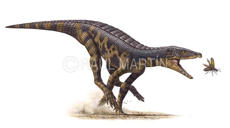 Immagine di proprietà dell'illustratore e paleoartista Raúl Martín: